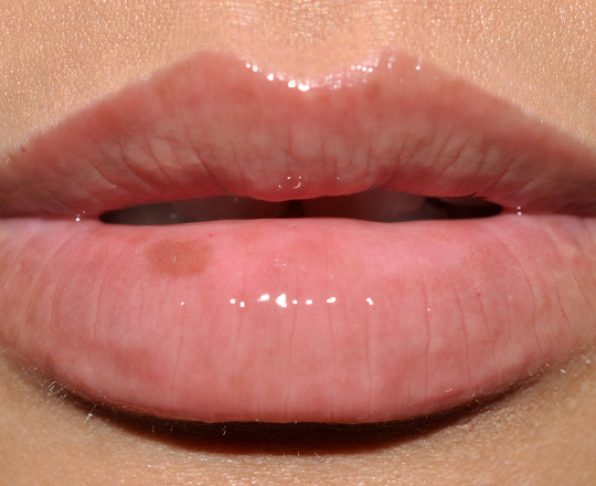Bobbi Brown Black Chocolate Lipgloss