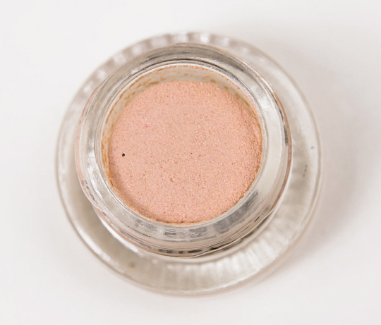 Buxom Cocker Spaniel Stay-There Eyeshadow