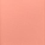 Estee Lauder Sensuous Rose Pure Color Blush
