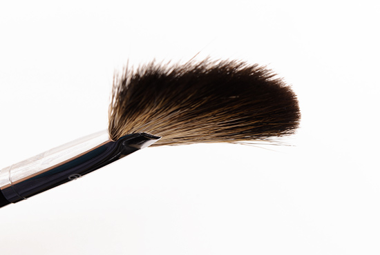 Sephora Pro Fan Brush (#65)