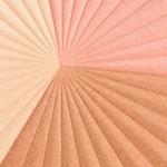 bareMinerals The Many Splendors Face & Body Luminizer