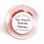 Fyrinnae Scarlet Macaw Eyeshadow