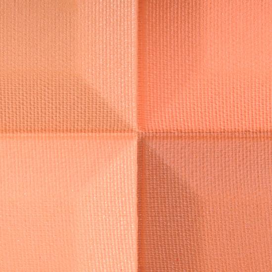 Givenchy In Vogue Orange Le Prisme Blush