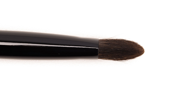 Chikuhodo Z-5 Eyeshadow Brush