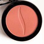 Sephora Rio (91) Colorful Eyeshadow (Discontinued)
