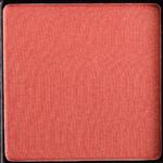Divergent Obscure Coral Long-Wear Blush