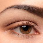 Laura Mercier Spring 2014 Artist Eye Colour Palette