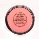 MAC For Your Amusement Casual Colour Lip & Cheek Colour