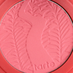 Tarte Fearless Amazonian Clay 12-Hour Blush