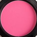 MAC Bred for Beauty Beauty Powder Blush