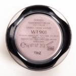Shiseido Mist (WT 901) Shimmering Cream Eye Color