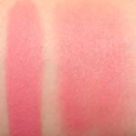 Tarte Irreplaceable Amazonian Clay 12-Hour Blush