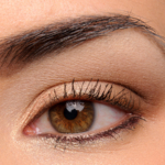 LORAC Unzipped Gold 10-Pan Eyeshadow Palette