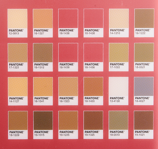 Sephora + Pantone Universe Facets of Marsala Eye Palette