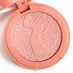 Tarte Celebrated Amazonian Clay 12-Hour Blush