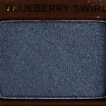 Too Faced Blueberry Swirl Eyeshadow