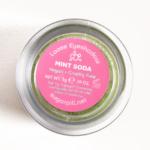 Sugarpill Mint Soda Loose Eyeshadow