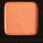 Anastasia Orange You Fancy Eyeshadow