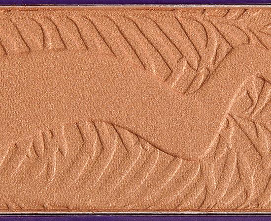 Tarte Park Ave Princess Amazonian Clay Bronzer