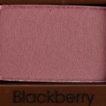 Too Faced Blackberry Eyeshadow