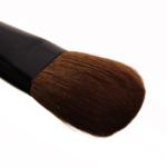 Wayne Goss Brush 12
