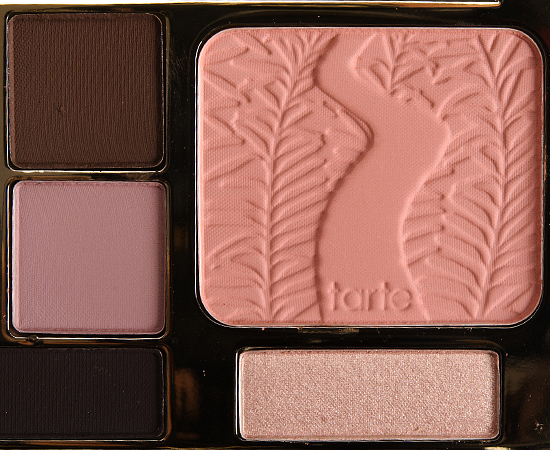 Tarte Energy Noir Eye & Cheek Palette