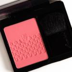 Guerlain Pink Me Up Rose Aux Joues (2015)
