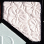 Dior Blue Garden #2 Glowing Gardens Eyeshadow
