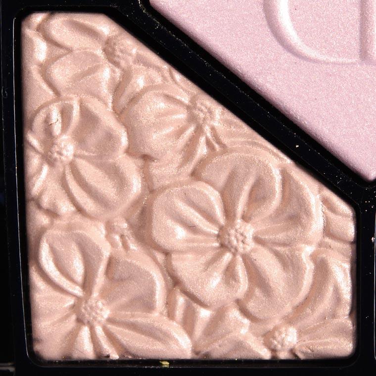 Dior Rose Garden #4 Eyeshadow