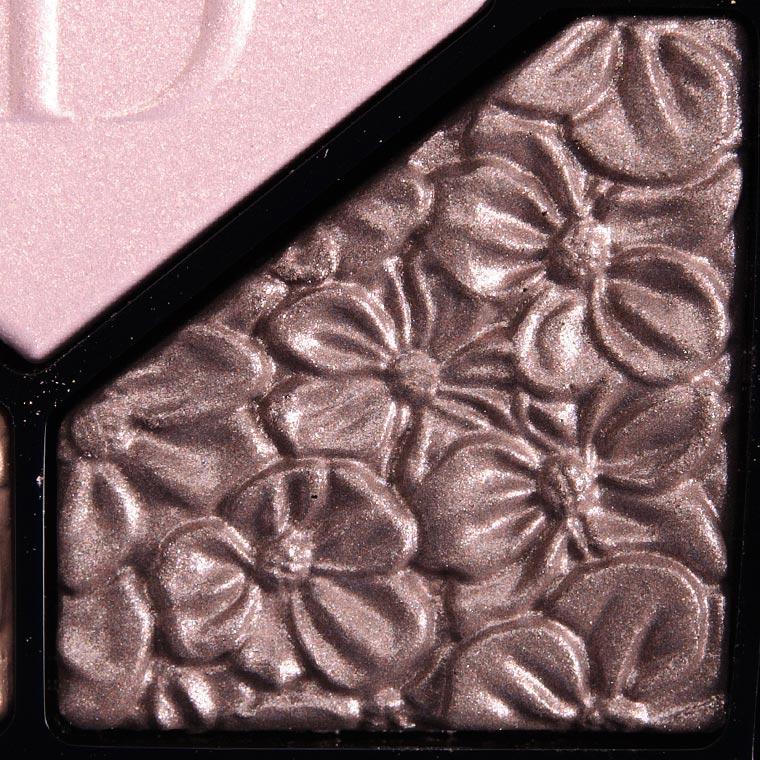 Dior Rose Garden #5 Glowing Gardens Eyeshadow