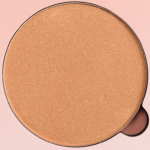 Anastasia Golden Bronze Highlight Powder