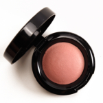 Black Opal Hibiscus Baked Blush