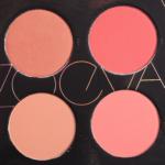 Zoeva Coral Spectrum Spectrum Blush Palette