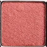 Urban Decay Salazen Grum Eyeshadow (Discontinued)
