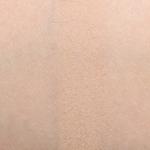LORAC Pink Nude Eyeshadow