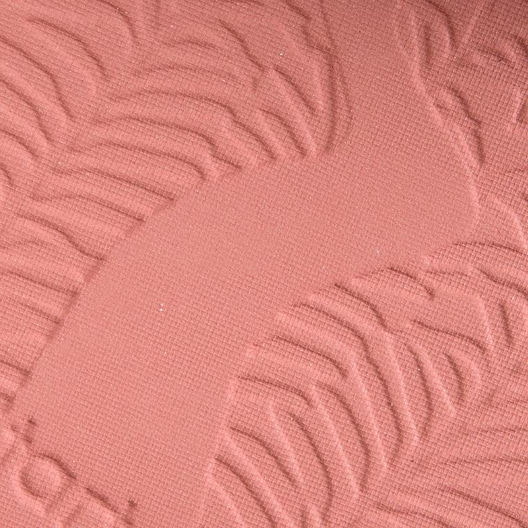 Tarte Risque Amazonian Clay Blush
