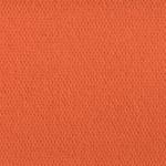 Viseart Orange #2 Blush