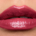 Anastasia Raisin Lip Gloss