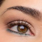 bareMinerals The Wish List READY Eyeshadow 12.0