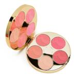 Tarte Color Wheel Holiday 2016 Blush Palette