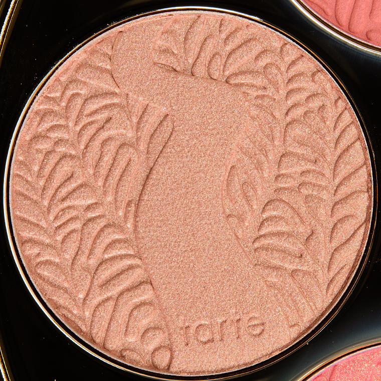 Tarte Idol Amazonian Clay 12-Hour Blush