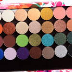 Coloured Raine Eyeshadow