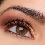 Tarte Tarteist Pro to Go Eyeshadow Palette