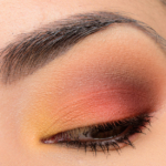 Viseart Warm Mattes Look | Look Breakdown