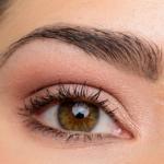 A Neutral Eye | Look Breakdown