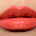 Estee Lauder Out of Control Pure Color Envy Sculpting Lipstick