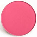 Colour Pop Poodle Pressed Powder Shadow