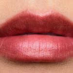 Estee Lauder Raging Beauty Hi-Lustre Pure Color Envy Lipstick
