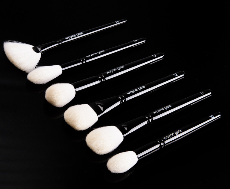 Wayne Goss The Face Set (2017) Brush Set