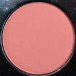 LORAC Caribbean Color Source Buildable Blush